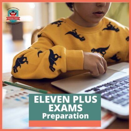 eleven-plus-exams-preparation