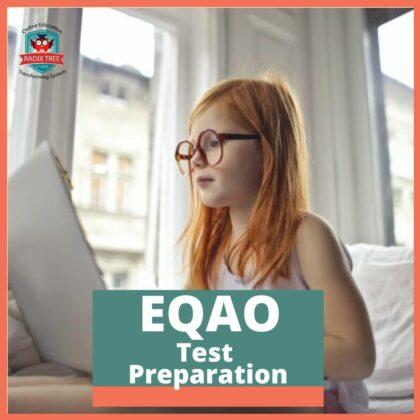 eqao-test-preparation